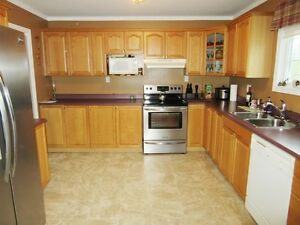 106A George Pierceys Lane in Hearts Content - MLS 1130576 St. John's Newfoundland image 3