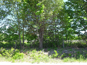 BUILDING LOT (#1) - FOR SALE