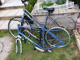 Three bikes Frames