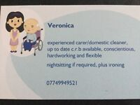 Carer / domestic cleaner