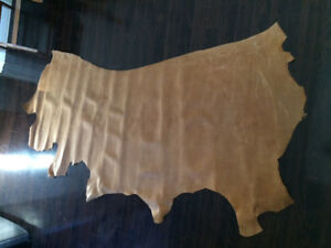 Large leather cow hide