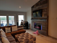 Build you electric fireplace with original barn board backing