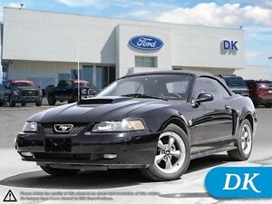 2004 Ford Mustang GT Convertible, Automatic w/Leather!