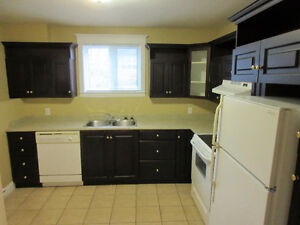 Airport Heights 2 bedroom basement apartment available March 5