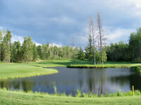 2 adjoining lots on Golf Course