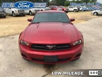 2010 Ford Mustang V6   - Low Mileage