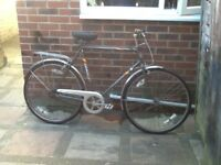 Emelle promenade road bike