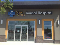 Seeking Experienced Veterinary Office Assistant