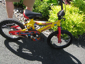 "Bike with training wheels( 12"")"