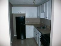 *2 Months Free Rent!! Newly Renovated Apartment Home!!*