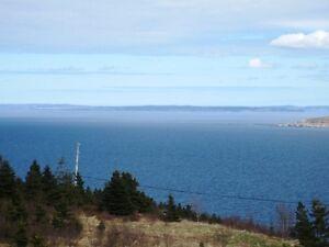 Seymours Rd #28 - Spaniards Bay - MLS 1133378 St. John's Newfoundland image 7