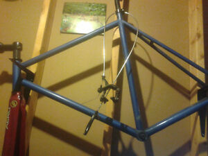 Fixed gear frame vilano