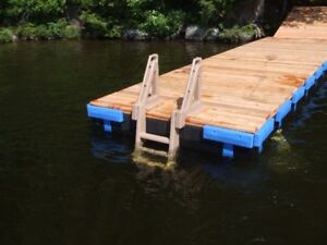 EASY-OUT-DOCK-LADDER