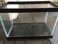 Small fish/ reptile tank
