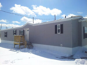 Brand New Mini Home For Rent in Milford Estates  76'x16'