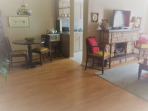 AFFORDABLE 1 BDRM FURNISHED (short leases available)