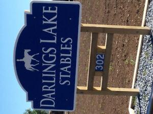 Horse boarding at Darlings Lake Stables