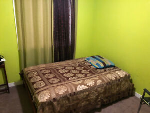 Room for Rent in Scarborough (Close to Warden Stn) (Male)