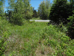 Approved building lot in chester basin
