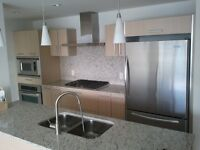 Luxury condo for short term rental -available starting Aug 30