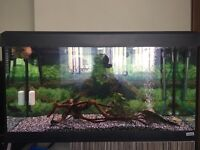 Complete Fluval fish tank 220l with stand and more