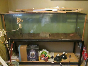 Large Tank Windsor Region Ontario image 1