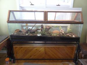Aquarium used as large terrarium