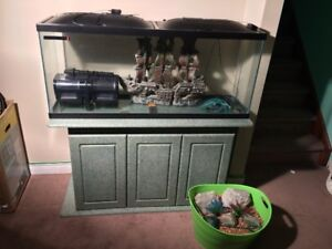 55 Gallon Fish Tank With Stand and Accessories.