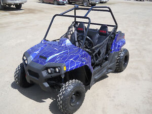 BRAND NEW KIDS/YOUTH/TEEN 150cc UTV SIDE BY SIDE / DUNE BUGGY