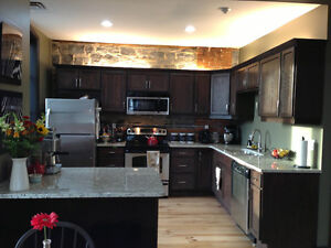 Room Avail in 3 BR Downtown High End Apartment - $850 all incl