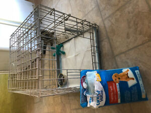 Kennel, training pads, bowl