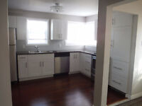 Newly Renovated Main Floor House/Apt for rent