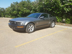 2008 Ford Mustang V6 **REDUCED**