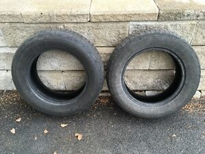 Tires Winter Force 195/65-R15