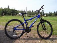 Mountian Bike For Sale