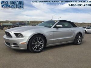 2014 Ford Mustang GT   - Leather Seats -  Bluetooth - Low Mileag