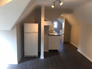 Completely Renovated 1 Bedroom    -     Near the Univeristy