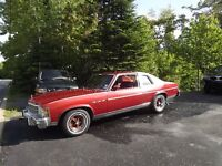 for sale 1976 Buick Skylark