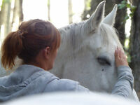 Reiki and Animal Communication