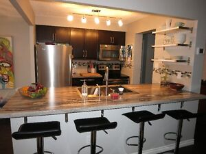 Downtown-Beautiful 1+ Bed Condo (avail. Jan. 1st) London Ontario image 2