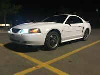NEED GONE! 2002 Ford Mustang $6000obo