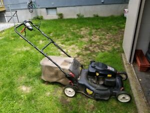 """I WILL"""" BUY """"YOUR OLD LAWNMOWER"""