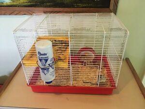 Gerbils with cage,food,bedding