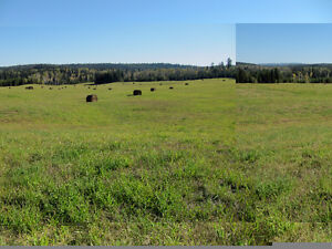 460 Beautiful acres in the Cariboo