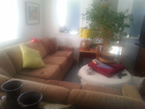 Sectional Sofa with Bed