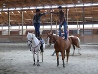 Cours d'equitation western