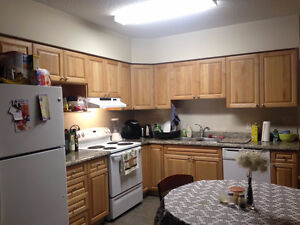 4 Month Spring Sublet at 203 Lester - 2/5 Bedrooms