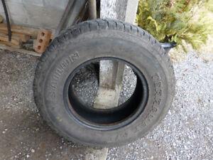 Sailun TerraMax truck tire