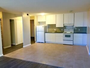 FALL SP! 1 Bdrm + Balcony DT Highrise ALL UTILITIES NEW RENO