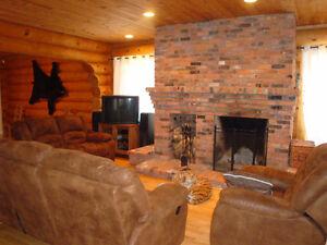 Sectacular family log house